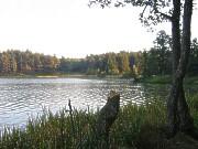 Jezioro Wyspowo