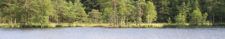 Zbychowo